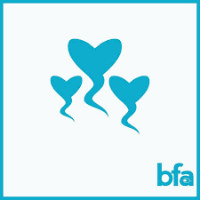 Brighton Fertility Associates: