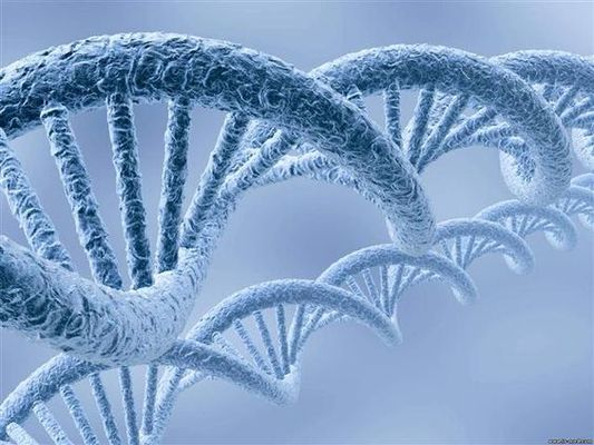 Genome Mutations: Why Do They Happen? Is It Possible to Prevent or to Correct Them?