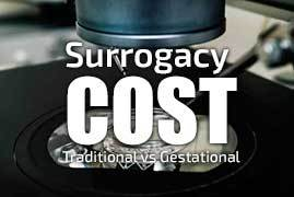 Surrogacy Cost: Traditional vs Gestational